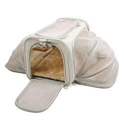 Jet Sitter Wings Expandable Soft Sided Dog Cat Pet Carrier – Airline Approved Airplane Cat ...