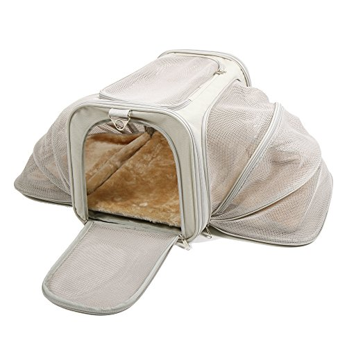 Jet Sitter Wings Expandable Soft Sided Dog Cat Pet Carrier