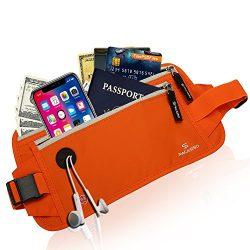 Pacasso RFID Blocking Passport Holder- Money Belt- Hidden Travel belt- Card Belt-Card Wallet (Or ...