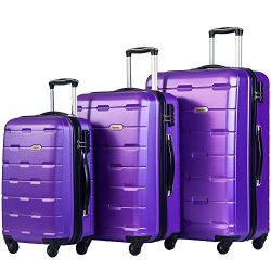 Merax Luggages 3 Piece Luggage Set Lightweight Spinner Suitcase (Purple)