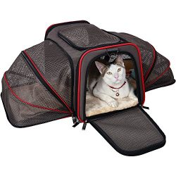 Petsfit Most Airline Approved Expandable Pet Travel Carrier, Two Side Expansion, Extra Spacious  ...