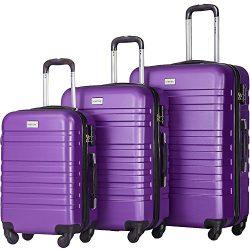 Merax Luggage Set 3 Piece Lightweight Spinner Suitcase (Purple)