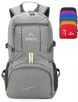 Venture Pal 35L Travel Backpack – Packable Durable Lightweight Hiking Backpack Daypack (Grey)