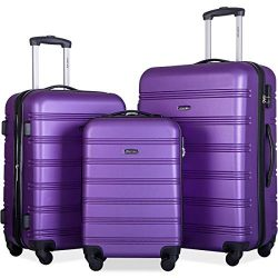 Merax Mellowdy 3 Piece Set Spinner Luggage Expandable Travel Suitcase 20 24 28 inch (Purple)