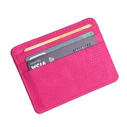 Fashion Women Lichee Pattern Bank Card Pack Document Bag Purse (Hot Pink)