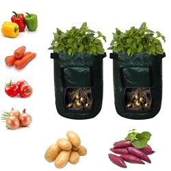 Cinhent Bag 2PCS Newly Home & Garden Potato Tomatoes Eco-Friendly Plant, Container for Plant ...