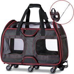 Katziela Airline Approved Pet Carrier with Wheels for Small Dogs and Cats – Removable Flee ...