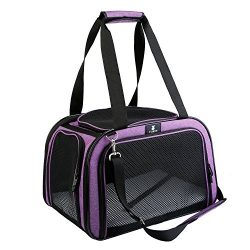 X-ZONE PET Pet Carrier for Dog and Cats, Airline Approved Soft-Sided Pet Travel Carrier,Portable ...