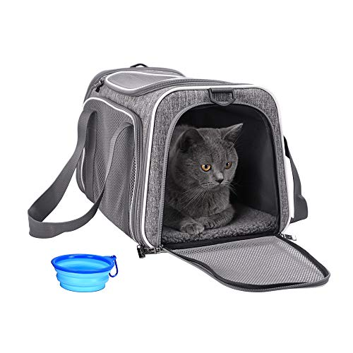 petisfam Pet Carrier for Cats and Dogs Up to 16 lbs