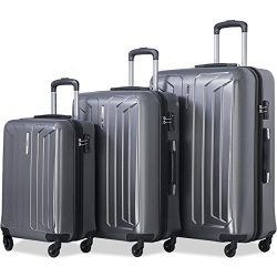 Flieks Luggage 3 Piece Sets Spinner Suitcase with TSA Lock, Lightweight 20 24 28 in (Grey)