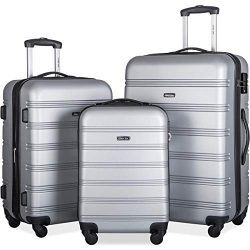 Merax Expandable Luggage Set with TSA Locks, 3 Piece Spinner Suitcase Set (silver)