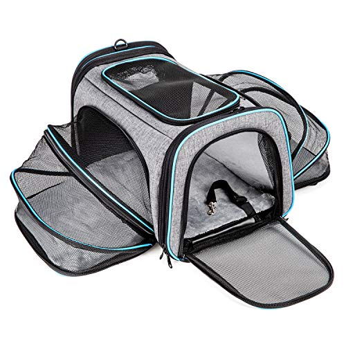 Cat Carrier Airline Approved Pet Carrier,Bertasche Expandable Soft Sided Dog Travel Carrier Bag  ...