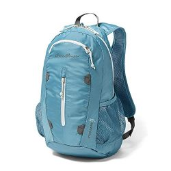 Eddie Bauer Unisex-Adult Stowaway Packable 20L Daypack, Rain Regular ONE Size