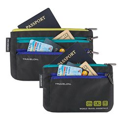 Travelon World Travel Essentials Set Of 2 Currency and Passport Organizers, Graphite