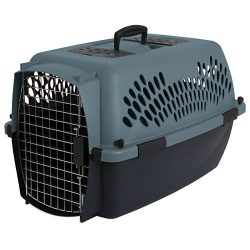 Aspen Pet Porter Heavy-Duty Pet Carrier,Storm Gray/Black,15-20 LBS