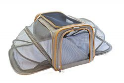 Travel Pet Carrier for Cats – Go Kitty Paws Airline Approved Expandable and Collapsible So ...
