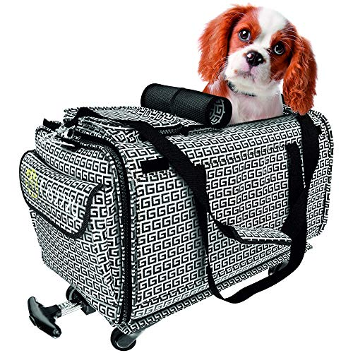 Premium Airline Approved Pet Carrier – Compact Pet Carrier with Wheels – Easy Click- ...