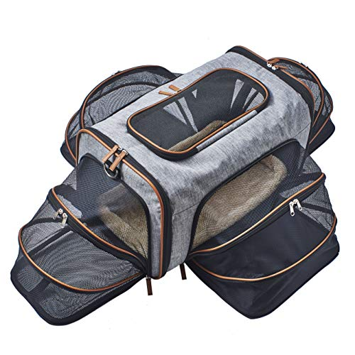 Premium Airline Approved Expandable Pet Carrier by Pet Peppy- Two Side Expansion, Designed for C ...